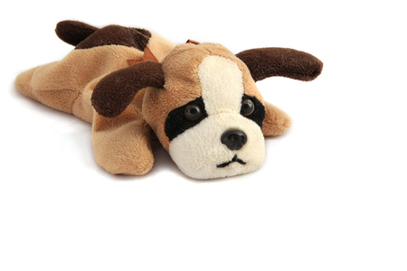 A stuffed dog with burn-out expression - copy space Stock Photo
