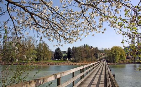Wooden bridge leading to the isle of Werd on the lake of Constance, Switzerland in spring time.