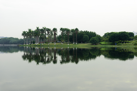 Landscape view of a garden by the lake side