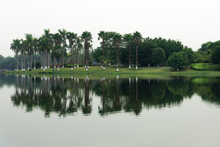 Landscape view of a garden at the lake front