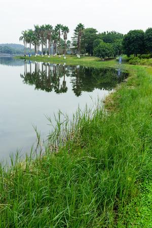 Landscape view of a park 写真素材