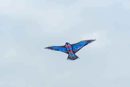 An eagle flying kite flying in the sky
