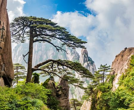 Zone panoramique de la montagne Huangshan, ville de Huangshan, province de l'Anhui