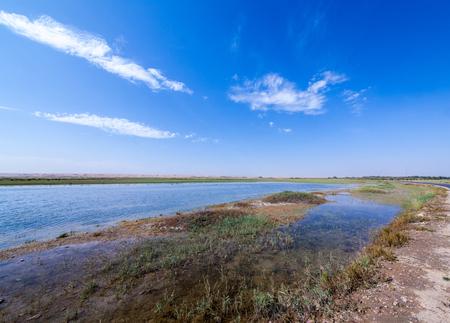Inner Mongolia Tonghu Grassland Scenic Spot Wetland Landscape