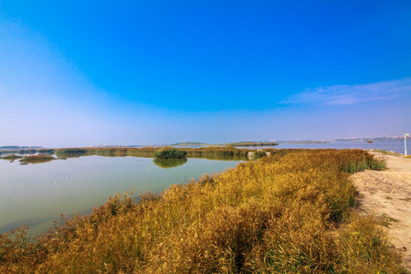 Natural landscape of Shahu wetland in Shizuishan city of Ningxia Reklamní fotografie