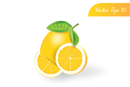 fresh 3d realistic lemon on isolated background Stok Fotoğraf - 121630908