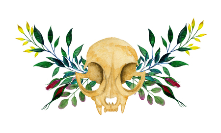 Cat skull on the background of a wreath of branches