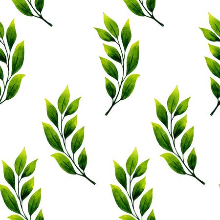 Naadloze aquarel illustratie van bladeren op witte achtergrond.