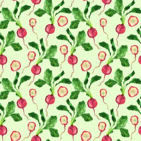 Illustration of radish on a light green background. Handmade watercolor vegetables. Фото со стока