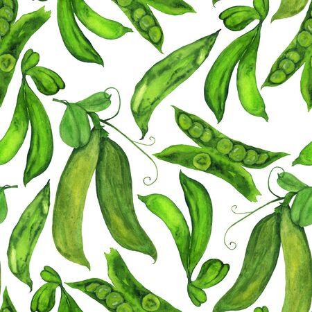 Pods of green peas in a pattern on a white background. Watercolor hand illustration for print and design.
