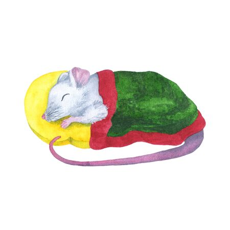 Watercolor cute sleeping mouse under a green blanket. Hand drawing symbol of the Chinese horoscope rat 2020. Printing on clothes, cards, invitations, children's illustration.