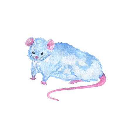 Watercolor cute blue rat symbol of the year 2020. Hand drawing Chinese horoscope animal mouse. Design for packaging, cards, invitations, printing on clothes.