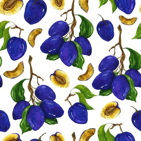 Bright juicy plum watercolor seamless pattern. Fruit berries and leaves drawing on a white background. For the design of postcards, textiles, notebooks, home decor. 写真素材