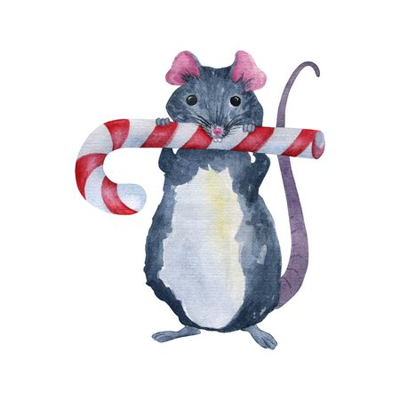 Gray mouse with a christmas caramel cane. Watercolor Christmas illustration 2020. Handmade isolated drawing for printing on postcards, notebooks, clothes.
