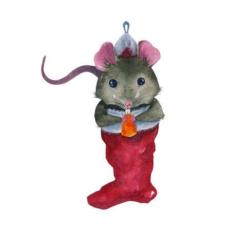 Watercolor drawing rat with a piece of cheese in a Christmas sock. New year illustration on a white background mouse symbol of 2020. For printing on postcards, notebooks, clothes.