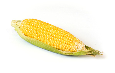 sweet corn isolated on a white background Banco de Imagens
