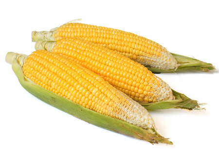 three sweet corn isolated on a white background