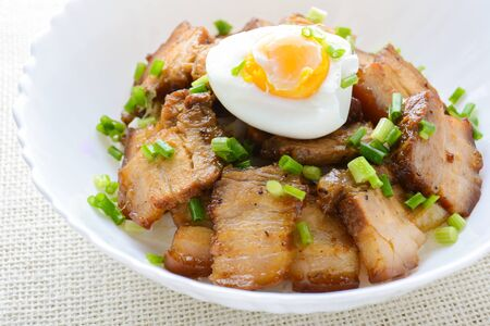 Bowl of rice topped with Braised pork belly and boiled egg, Japanese called Kakuni-don