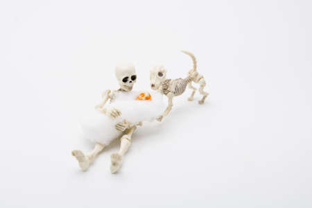 Skeleton mother with her children and a skeleton dog, happy moment for baby born. Reklamní fotografie