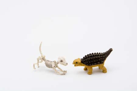 Skeleton dog and Ankylosaurus, friend relationship