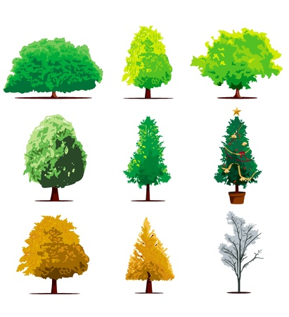 tree icon set Stock Vector - 12321076