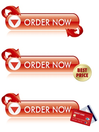 purchase order: Order Now Button Vector