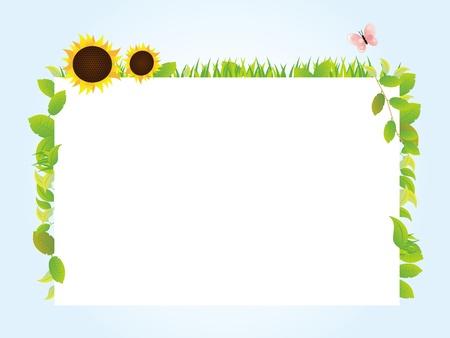 sunflower field: whiteboard summer  Illustration