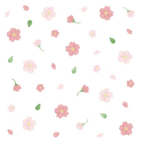 Watercolor cherry blossom illustration set Çizim