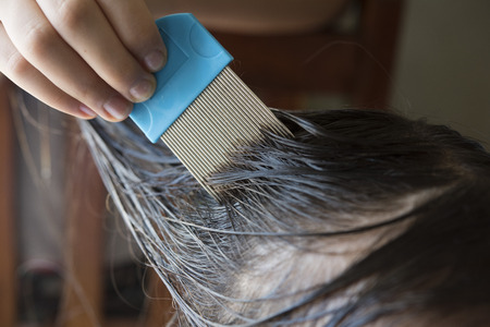 nit: a girl is doing head lice treatment, closed up shot