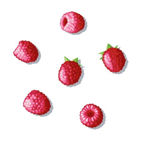 Derry raspberry