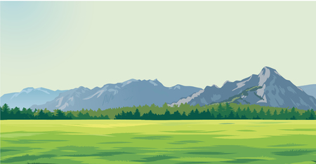 green glade against the background of mountains 版權商用圖片 - 112093440