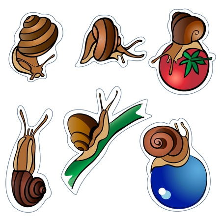 Set from six ������� with shells in various poses, There are radial and linear gradients.