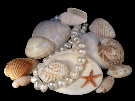 The group of various sinks of mollusks, pearl necklace and starfish is on a black background Stock Photo