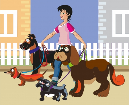 The young cheerful girl walks four dogs of various breeds along buildings  All layers separate, are easily edited, gradients aren Vector