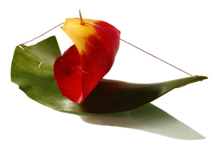 The ship is made of a green leaf of a tulip, a red petal of a flower and a toothpick on a white background Stock Photo