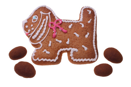 The image of a gingerbread doggie with a red and white pattern and four chocolates on a white  photo
