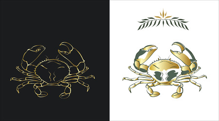 Two stylized sketches of a crab in gold and dark green colors on white and black background. Contour of a crab and a fill can be easily separated from a background. Stock Vector - 4742509