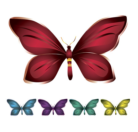violet red: Several butterflies in variety of bright colors on a white background
