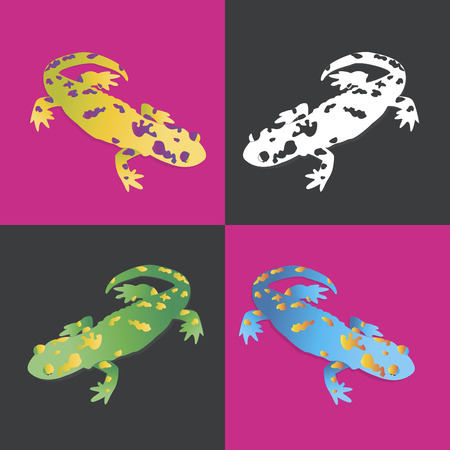 Four brightly colored salamanders on a contrast background. Feel a vibrancy of color! Illustration