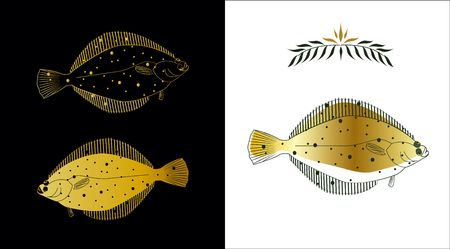 plaice: Three stylized sketches of a flatfish made with gold and dark green colors on white and black background. Contour of a fish and a fill can be easily separated from a background Stock Photo