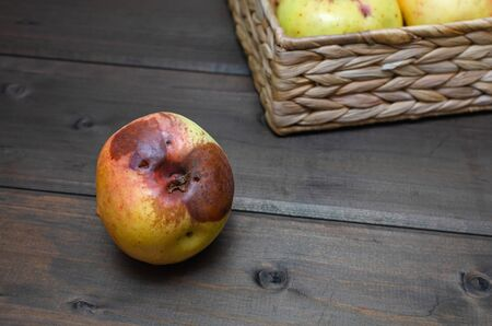 ugly apples at wicker basket on the wooden brown background. close up. Outdoor. horizontal orientation with copy space.