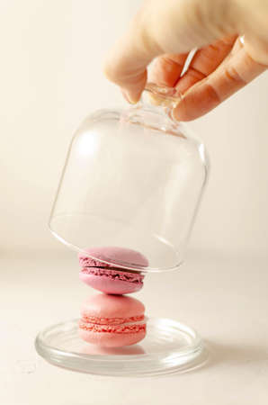 delicious delicate multi-colored macaroons on a platter. female hand closes a transparent glass lid on a light background. with place for text. selective focus 版權商用圖片