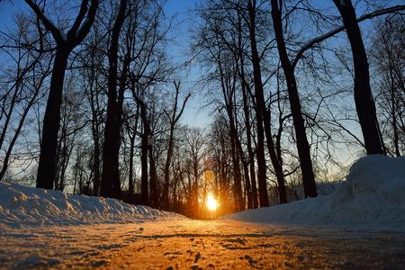 Winter sun shines right on the horizon.