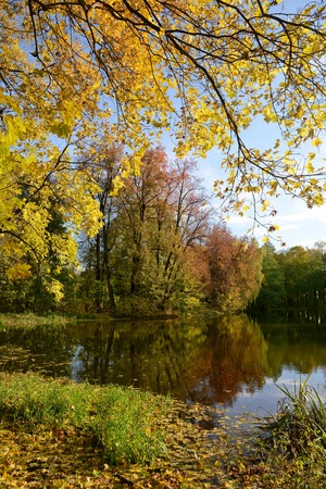 Autumn Park on the estate of Count II Vorontsov-Dashkov. This Park is located near the Church of the Vladimir icon of the Mother of God - the famous monument of Russian Gothic revival of the eighteenth century in the village of Bykovo, Ramensky district M Фото со стока - 62946902