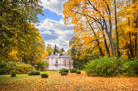 Palace of Peter 3 in Oranienbaum surrounded by golden autumn trees of the park