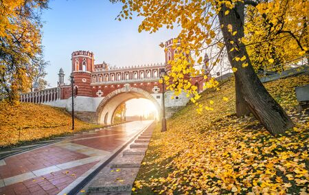 Golden autumn trees in Tsaritsyno park in Moscow and a beautiful Figured bridge in the morning sun Stock fotó