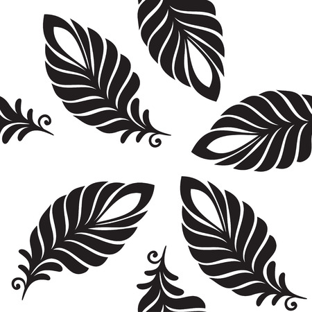 white feathers: Abstract pattern black and white feathers