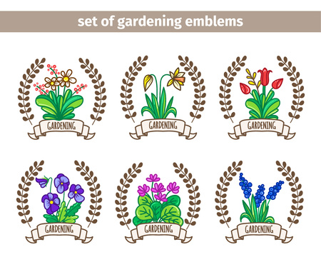 market gardening: Set compositions of spring garden flowers. Elements for your design. Vector illustration.