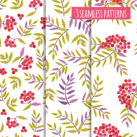 Set of 3 floral backgrounds with abstract rowan  berries and leaves. Autumn seamless pattern.Texture for textiles, wrapping paper and other surface swith autumn objects in vector.