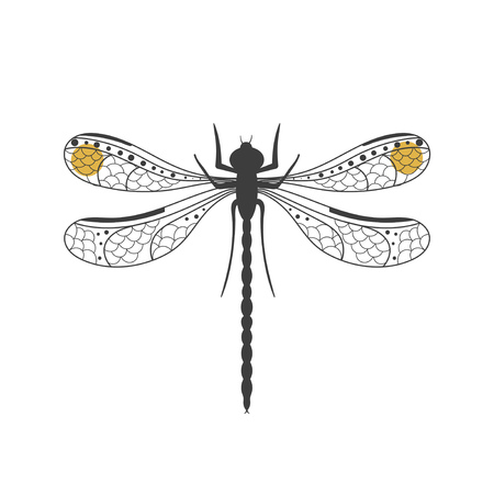 Vector illustration of a hand-drawn decorative dragonfly isolated on white background. Can be used for postcard, print, poster. Ilustrace